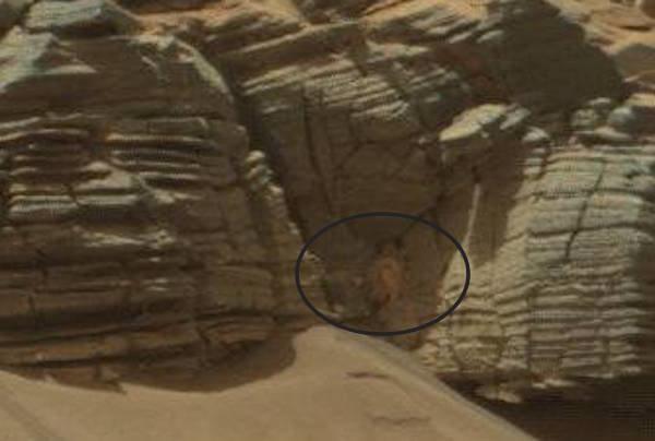 Face On Mars Archives » MarsNews.com